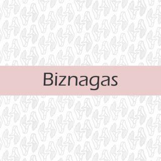 Biznagas